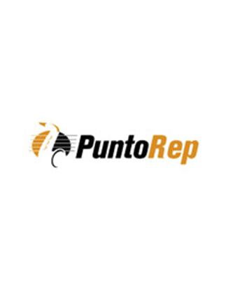 Logo Punto Rep