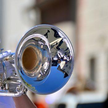 limpieza de instrumentos musicales