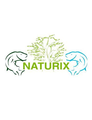 Logotipo Naturix