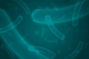 Eliminación de microorganismos en sector de la alimentación